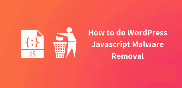 How to remove javascript or scripts in wordpress?